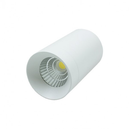 LED Ceiling Light -7W white Bridgelux COB