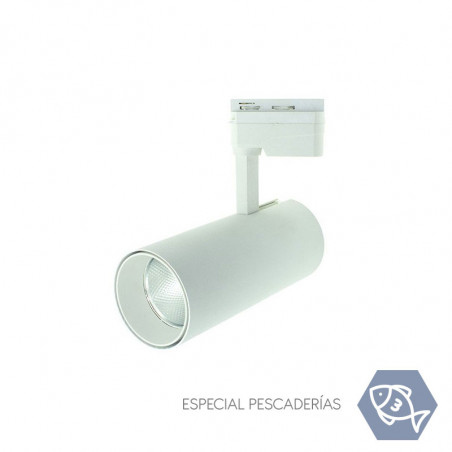 Rail LED Tracklight- White,...